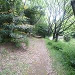 夢の島緑道2